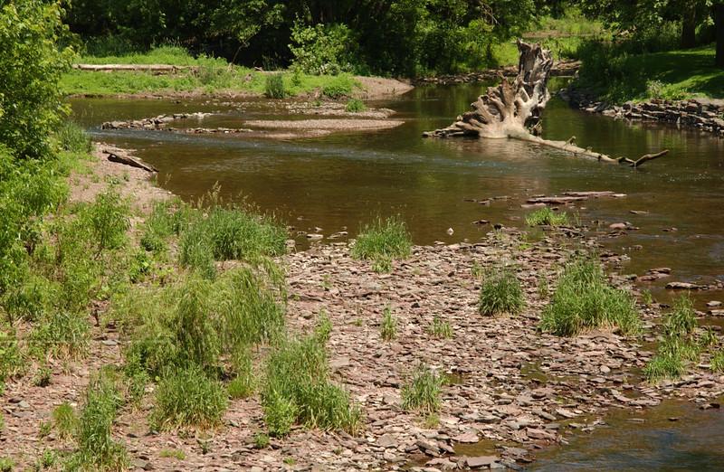 Old log in E. Branch of Perkiomen Creek, seen from bridge