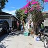 2013-08-24-120305-sx230bish-7934