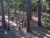 2012-08-03-073626-SD550-0686