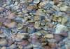 2012-08-02-174807-SD550-0662