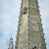 Perigrin Falcon are netting in the spire 2019
