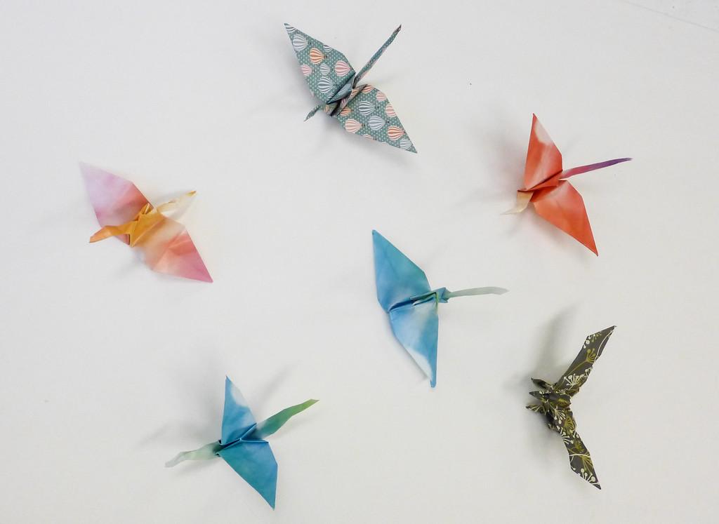 Artsy Butterflies-010