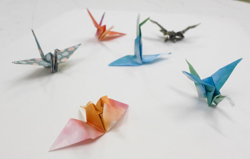 Artsy Butterflies-007