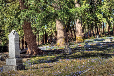 """Saint Andrew's Anglican Cemetery - Courtenay, BC, Canada Visit our blog """"St. Andrew's Anglican Cemetery"""" for the story behind the photos."""