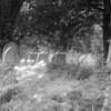 mystical godshill b
