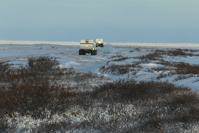 Polar rovers on the tundra