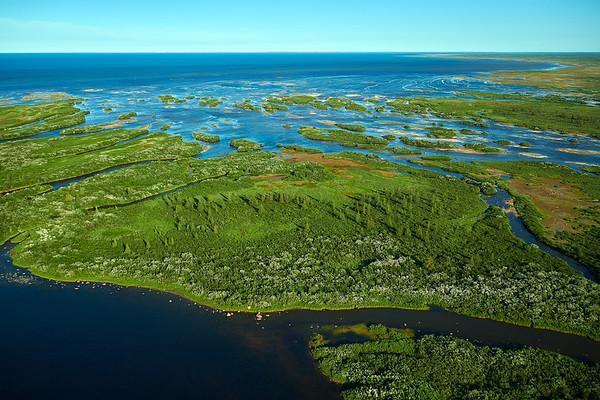 Seal river delta