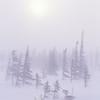 Taiga blizzard, Available through Masterfile