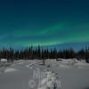 moonlight snowshoeing # 4