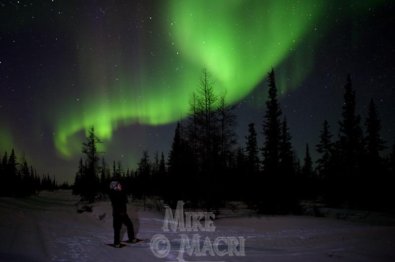 Viewing Northern lights on snowshoes.