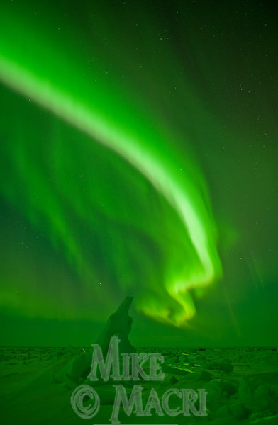 aurora borealis at Hudson Bay floe edge 11