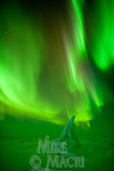 aurora borealis at Hudson Bay floe edge 9