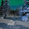 moonlight snowshoeing #2