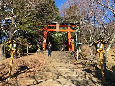Shrine Torii