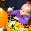 Greens_Pumpkin_Day_2013_06