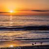 Malibu_Hills_Dec_2013-22
