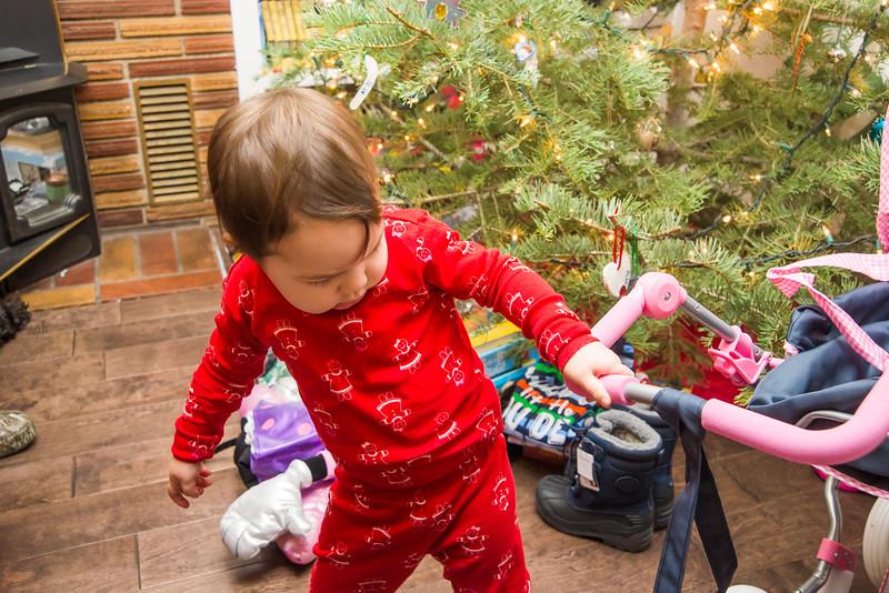 Wandler_Christmas_Redding_2015_51