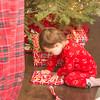 Wandler_Christmas_Redding_2015_18