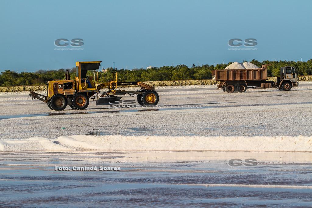 Colheita de sal