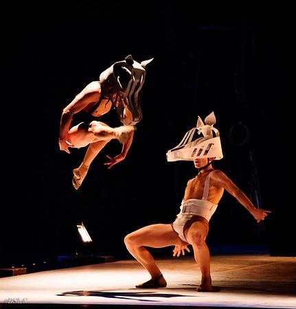 Cienfuegos Danza