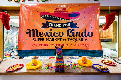 Cinco de Mayo_Madison Jobe_2017_001