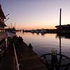 Enjoying drinks, sundown and dolphins