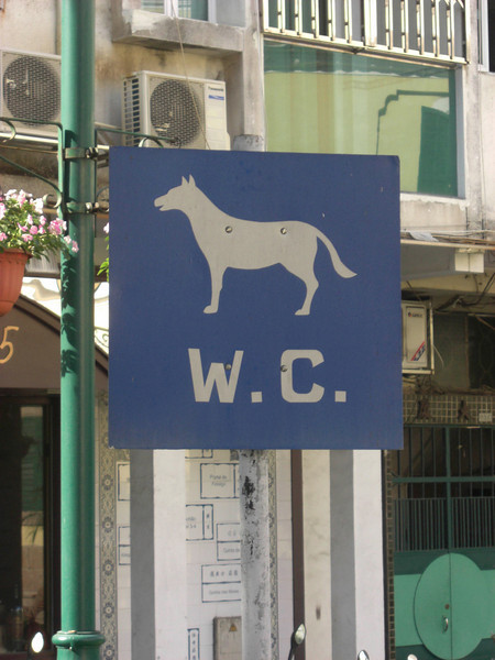 Every town should have this, Macau