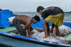 Copra workers loading their copra boat, Simeulu Island, Sumatra
