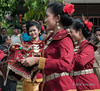 Young women in traditional dress carrying an offering during the welcome ceremony, Belitung Island, Sumatra