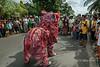 The lion dancer versus the people, Belitung Island, Sumatra