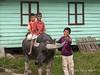 Batak-boys-with-the-family-water-buffalo-1,-Lingga-Brastagi,-North-Sumatra