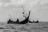 Tritone,-Acehnese-fisherrmen,-Bireuen-region,-Aceh-Province
