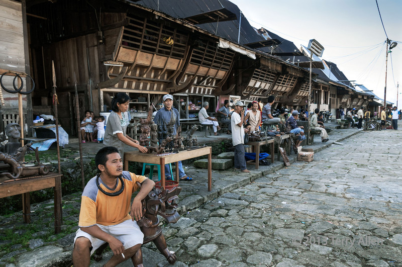Village street showing the traditional houses, Bawomataluo village, Nias Island.