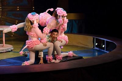 Fresco Rose & the Pink Poodles