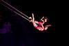 Chemins Invisibles 2012 - Québec - Cirque du Soleil - Ville de Québec