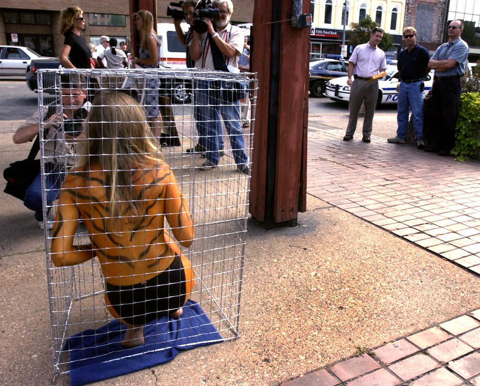 . A small crowd of media and onlookers gather to watch as Peta activist Holly Fraser, 26, painted to resemble a Tiger, protests the mistreatment of animals in the circus and other venues by sitting in a cage during a demonstration Thursday at the corner of Saginaw Street in downtown Pontiac.