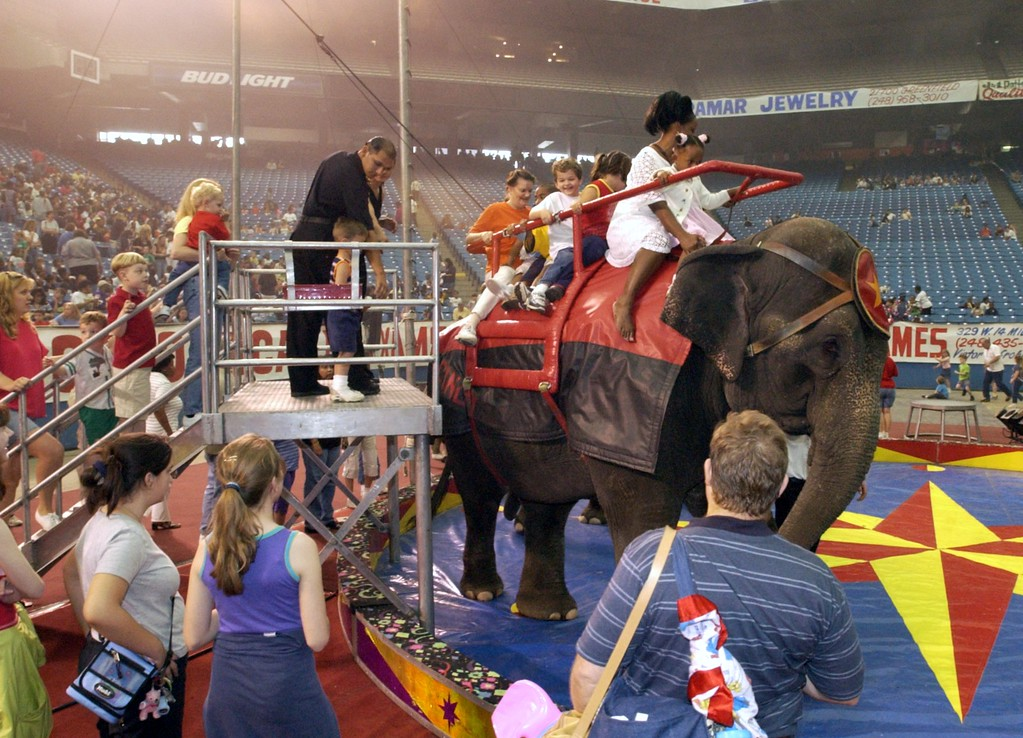 . During the intermission, some of the crowd came down to the floor of the Silverdome and had a chance to ride on one of the many elephants at the Schrine Circus Xtream at the Pontiac Silverdome.