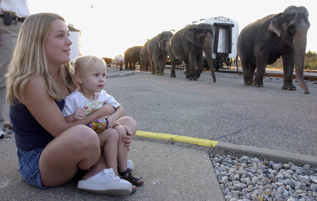 . Tara Finkbeiner of Vassar holds her daughter Victoria, 2, as they watch the elephants leave the unloading area for a 3.8 mile walk to the Palace of Auburn Hills for the up coming Ringling Bros. & Barnum & Bailey show.
