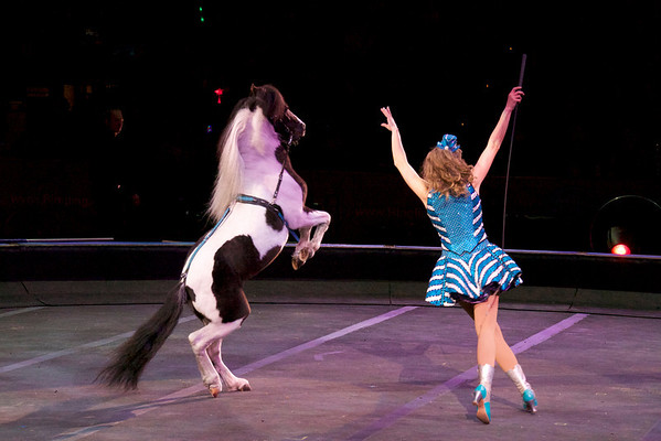 Circus Pony Act