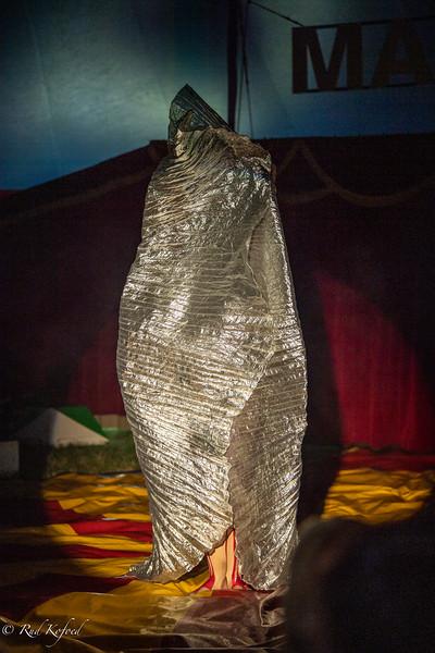 En spændende 'pakke' i sølvindpakning bliver bragt i manegen...