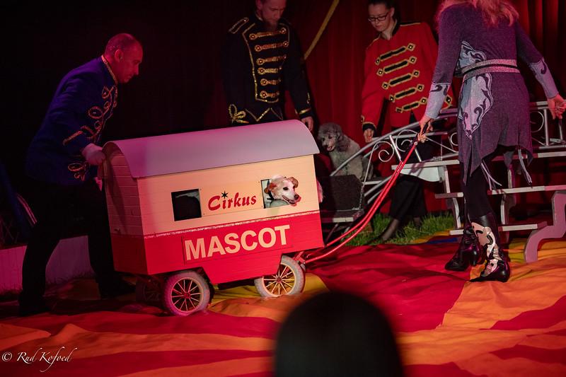 Cirkus er I by...