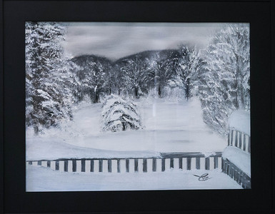 "Snowy Backyard ...24x18"" Black and While Oil paint on canvas"