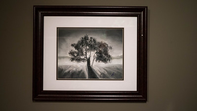 Brother Tree ...Black and White Oil on Canvas board 12x16 I used black gesso on the canvas and worked and brighter tone then back to dark.