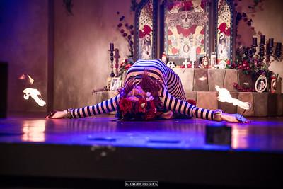 Cirque de la Nuit 2016