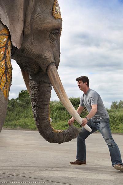 Cirque du Soleil: XBOX Kinect Elephant