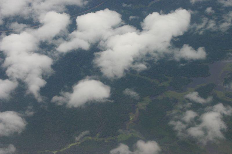 Manaus010