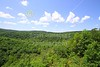 Sunday, July 17, 2011 - Green Ridge is the second largest of Maryland's State Forests consisting of a 46,000-acre oak-hickory forest. It is located in eastern Allegany County, approximately eight miles east of Flintstone.