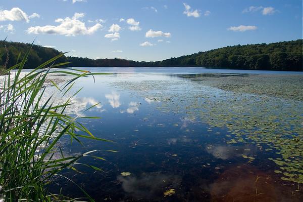 Ames Pond