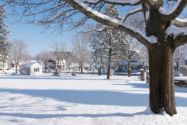 Chelmsford Town Common in Winter