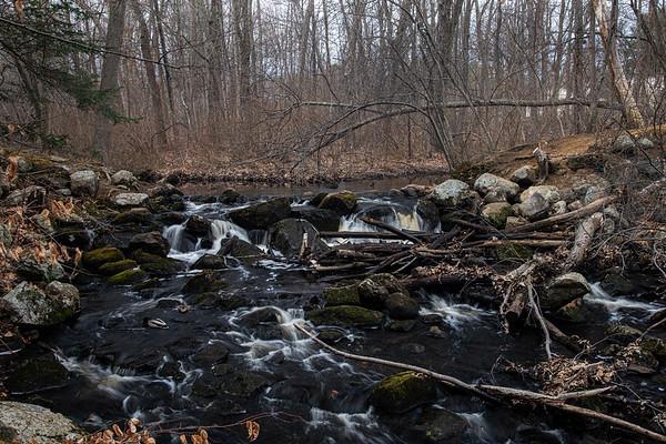 Bartlett Woodlot waterfalls.